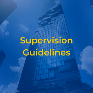supervision-guidelines
